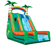 22′ Tropical Dual Lane Water Slide Rental