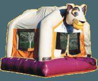 Safari Moon Bounce Rental