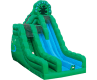 Emerald Ice Dual Lane Slide Rental